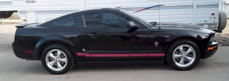 Black 2009 Ford Mustang Warriors In Pink Coupe